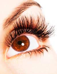Latisse Eyelash Eyelash Enhancement Side